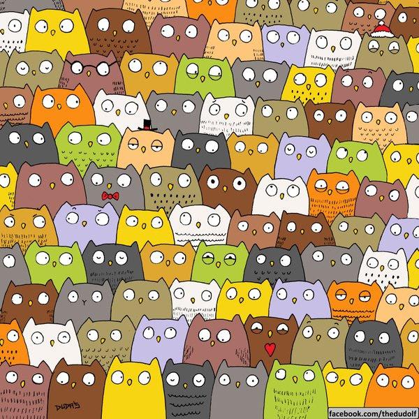 cat_owl